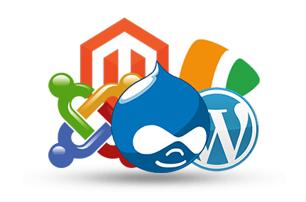A CMS website for your business?
